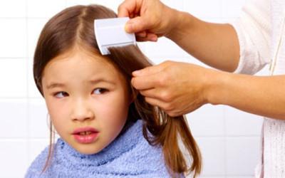 Help! My Child Has Lice!