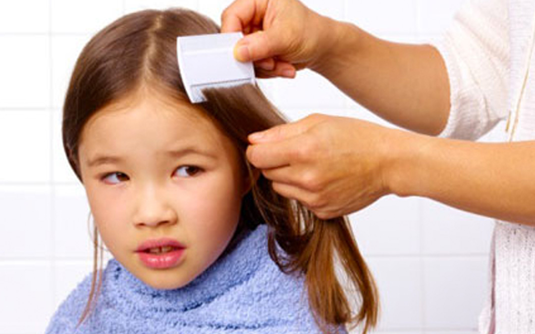 Help! My Child Has Lice!